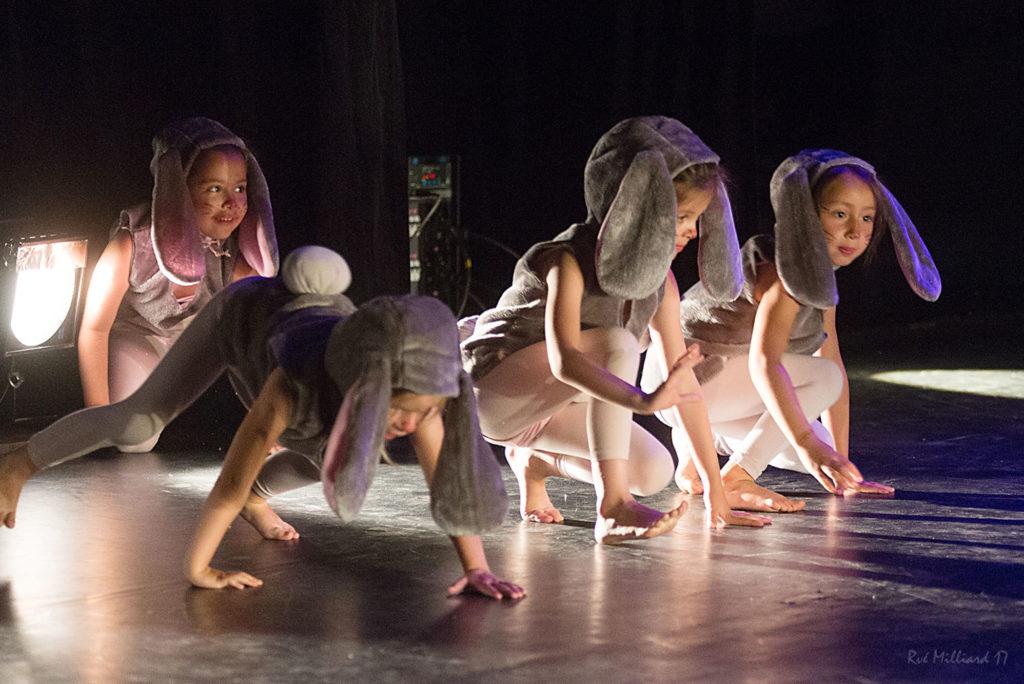 Cours-danse-harmonie-aix-en-provence-gala-2017 (20)